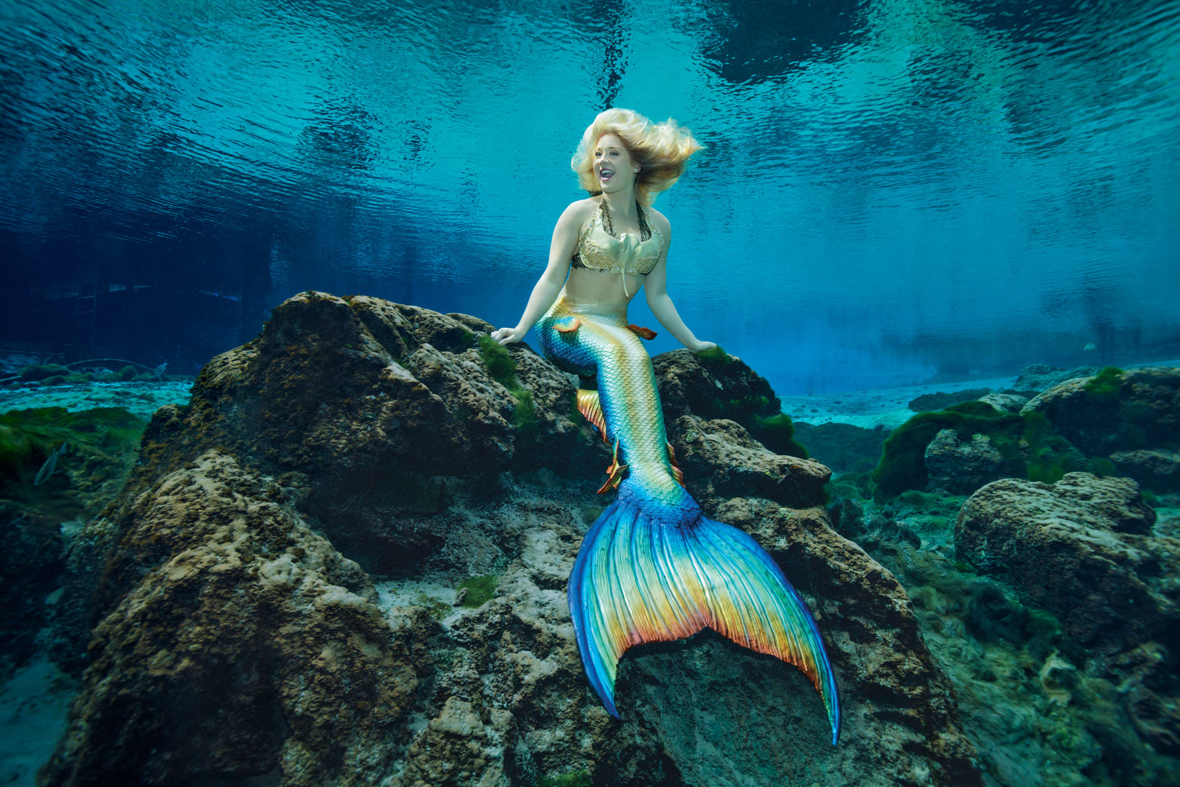 Mermaid-Amanda